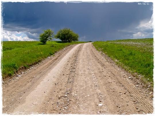 © Dainis Derics | Country Path | Dreamstime Photos